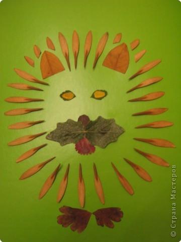 Аппликация: Наши поделки в садик. Праздник осени. фото 4