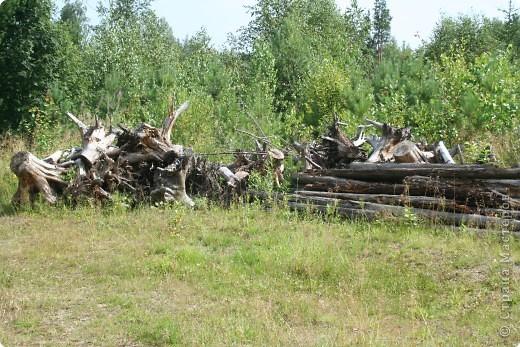 Летом,  всей семьей ездим на экскурсии по Уралу. У нас тоже есть на что посмотреть. Это одна из достопримечательностей нашего края. фото 13