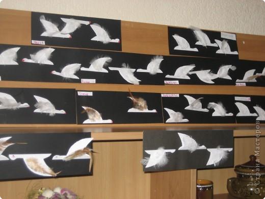 Аппликация: Птички Улетели фото 2