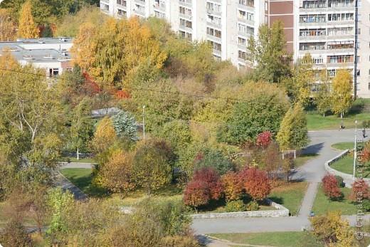 Вид из  окна. Мы живем на 14 этаже. Так интересно наблюдать за изменениями природы в течении года. фото 1