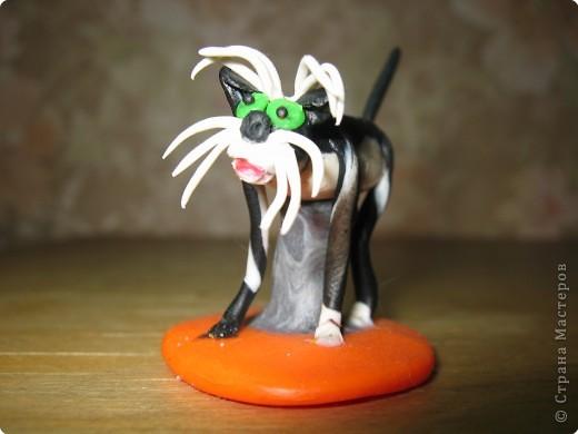 Собака. Порода Фокстерьер. фото 6