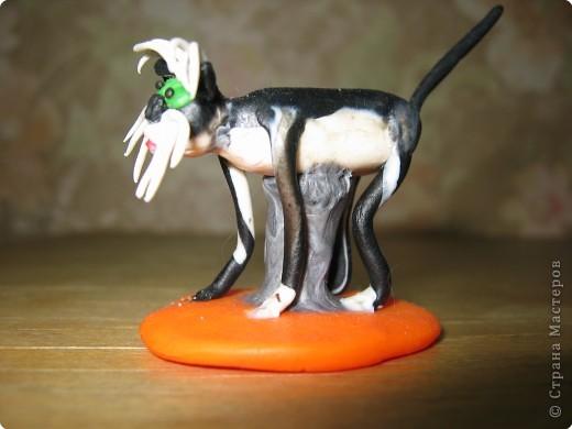 Собака. Порода Фокстерьер. фото 7