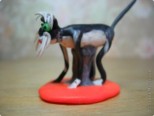 Собака. Порода Фокстерьер. фото 9