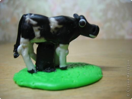Лепка: Корова и теленок. (пластилин) фото 3