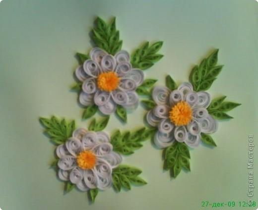 Квиллинг: Цветочки