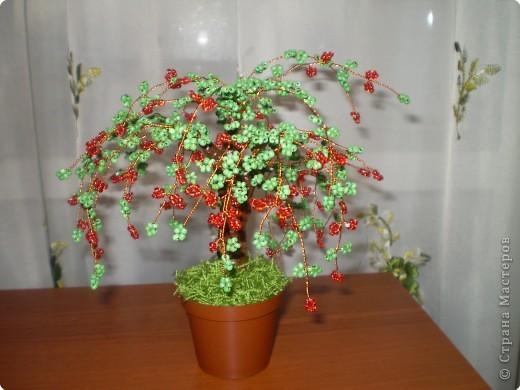 Бисероплетение: дерево из бисера
