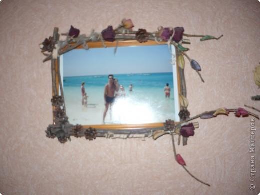 Эта рамка сделана из упаковки от CD диска, картона, ягоды рябины и засушенных роз. фото 6
