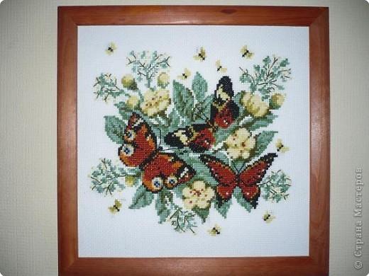Вышивка крестом: Бабочки.