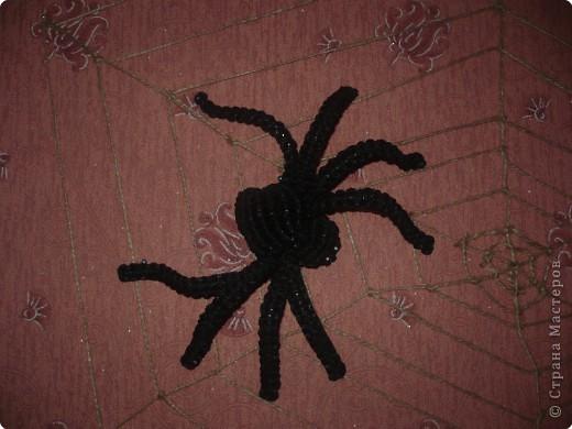 Макраме Паук на паутине Нитки