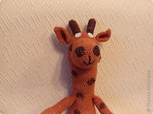 Вязание крючком: Жираф от мужа)) фото 2