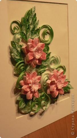 Вот и ещё цветочки созрели... фото 2