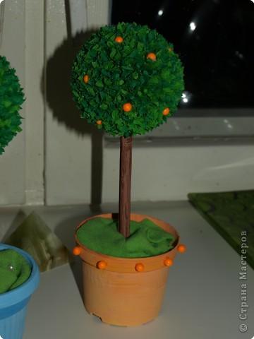 Дерево счастья. Собирается достаточно просто, времени надо часа 4-5 фото 1