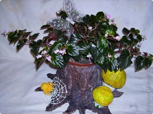 Кашпо под цветы в виде веселого пенька сделано в технике папье-маше из бумажной массы. фото 1