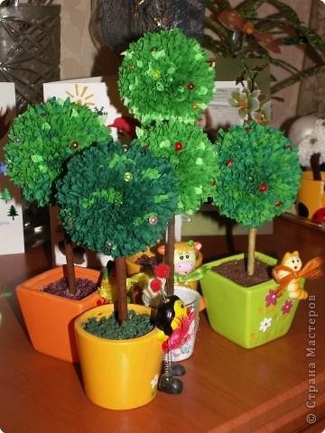 Целая аллея Чудо - Деревьев фото 2