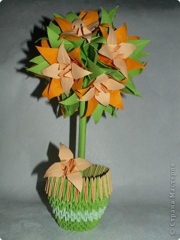 Оригами модульное: Лилейное дерево) фото 1