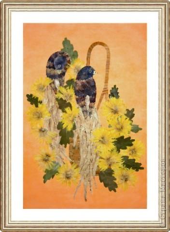 Райские птицы и хризантемы фото 1