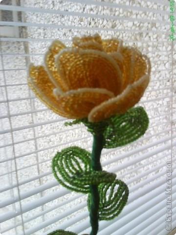 Бисероплетение: Цветы, цветы фото 3