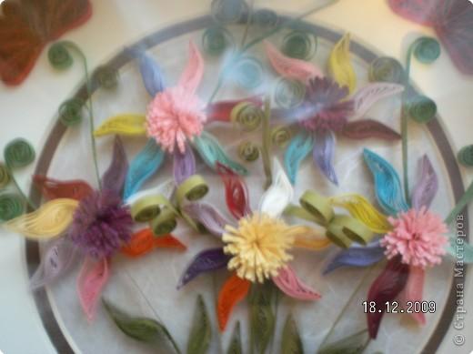Квиллинг: Цветики-семицветики фото 1