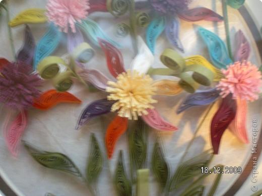 Квиллинг: Цветики-семицветики фото 2