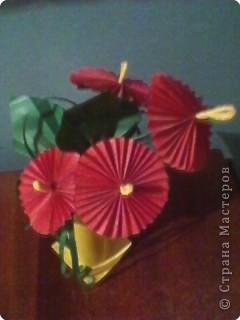 Букетик в подарок фото 2