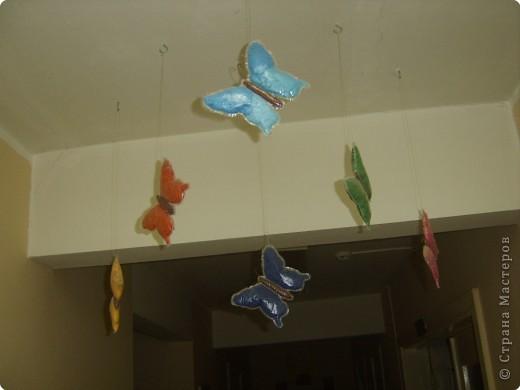 Не определена: Ещё бабочка фото 1