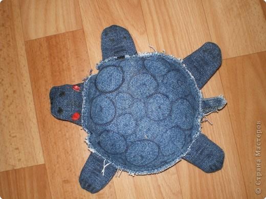 Шитьё: красноухая   черепаха