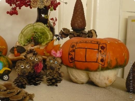 """Поделки были сделаны для конкурса на тему """"Осенняя фантазия"""". Павлины сделаны из гриба, который растет на дереве. фото 6"""