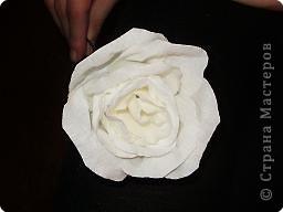 Бумагопластика: роза