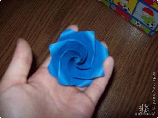 Синяя розочка, моя первая