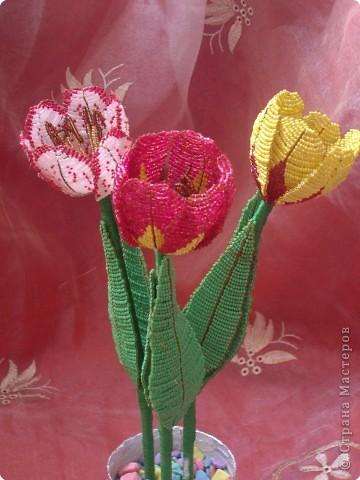 Бисероплетение: тюльпаны