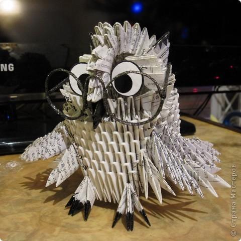 Это моя сова, она очень умная :) фото 1