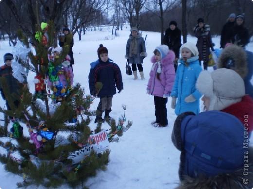 """Кроме традиционной школьной """"тёплой"""" ёлки мы с родителями моих первоклассников решили преподнести новогодний сюрприз """"Ёлка в школьном саду"""". фото 1"""