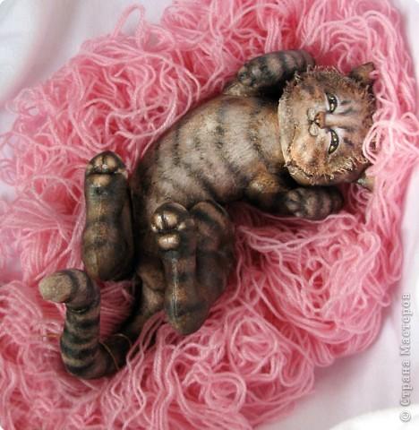 Шитьё: Кошка-балдежница :))))) фото 5