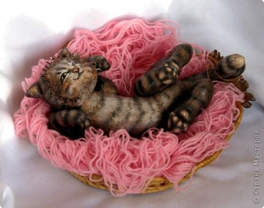 Шитьё: Кошка-балдежница :))))) фото 6