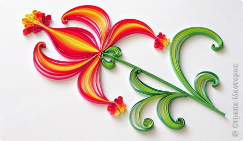 Аленький цветочек. фото 6