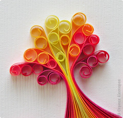 Аленький цветочек. фото 3