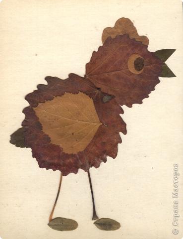 Поделки из засушенных листьев для детей
