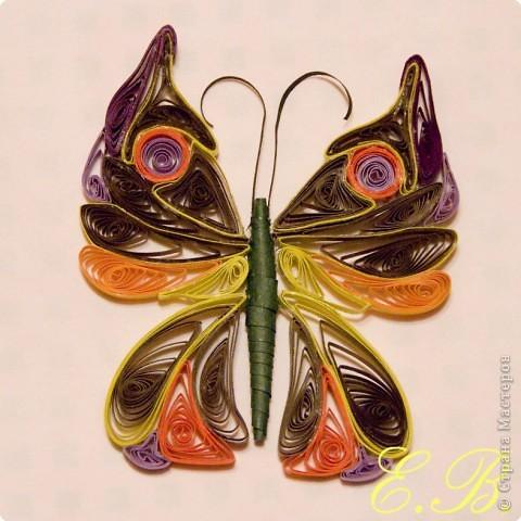 Бабочка № 1 фото 2
