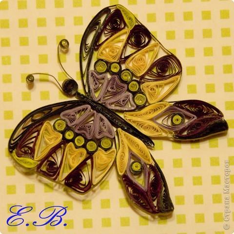 Бабочка № 1 фото 3