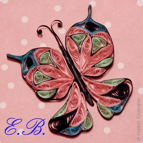 Бабочка № 1 фото 4