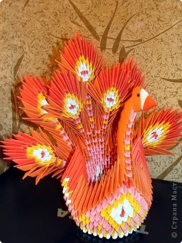 модульное Жар-птица Бумага