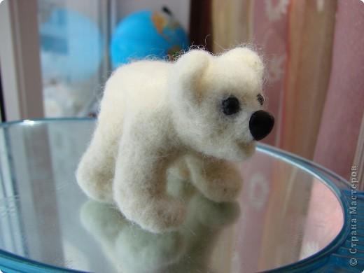 Вот Владушкин полярный мишка. фото 1