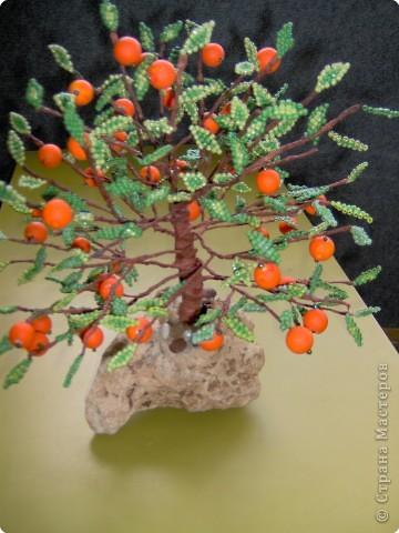 Бисероплетение: Апельсиновый рай фото 2
