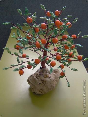 Бисероплетение: Апельсиновый рай фото 1