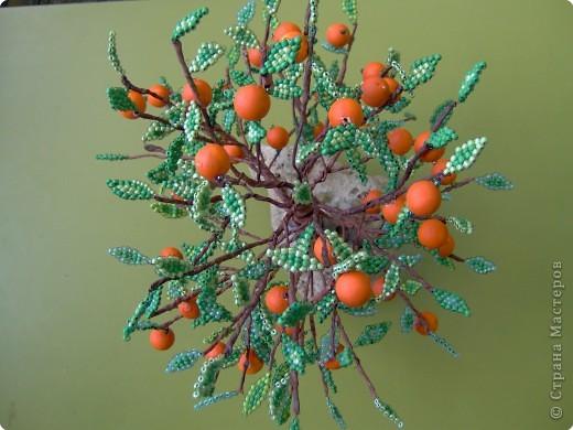 Бисероплетение: Апельсиновый рай фото 3
