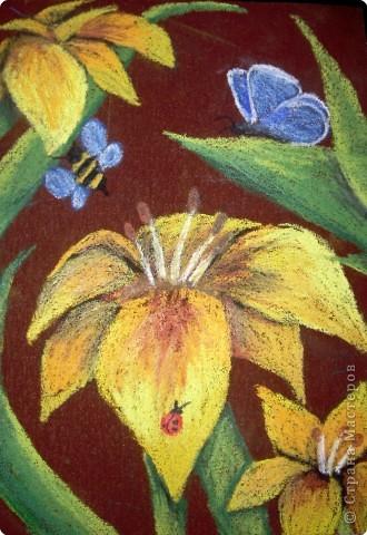 Рисование и живопись: Лилии на наждачной бумаге фото 1