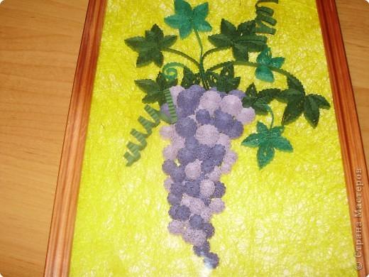 Квиллинг: Мой гофро-виноградик