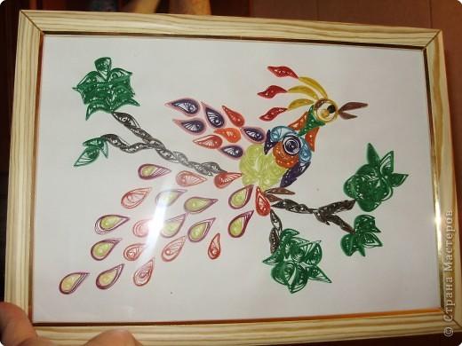 Квиллинг: Жар - птица