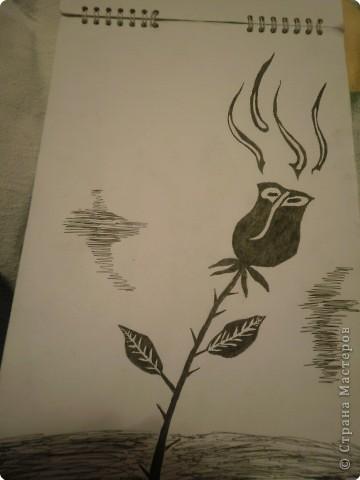 Рисование и живопись: Рисунки фото 6