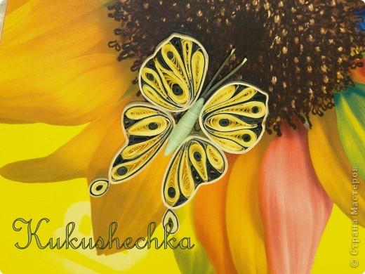 Что-то о бабочках вспомнилось.... Совсем я их забросила, надо исправляться) Соскучилась. Пойду крутить)